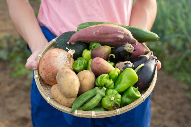 毎日のように「自作の野菜」をくれるお隣さん。使い切れず捨てることもあって気が引けます.../お悩み相談
