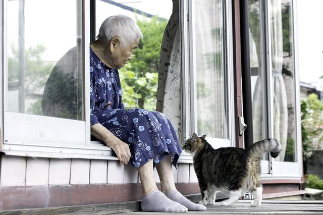 「もしも」の場合、飼い猫は...? 義父の体調不良で考えた「高齢者とペット」問題/キッチン夫婦