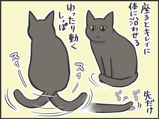 しっぽ2.PNG