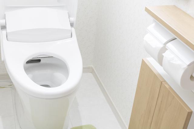 「トイレはふたを閉めて流して!」9歳の孫が必死に家族に伝える理由に感動した「ばあばの私」