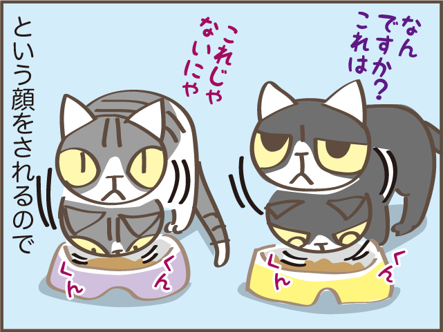 「なんですか?これは」欲求に忠実な猫たちのごはん代が右肩上がり.../しまえもん