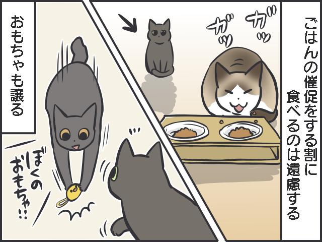 不器用猫1.PNG