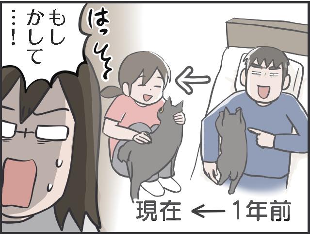 猫のブーム7.PNG