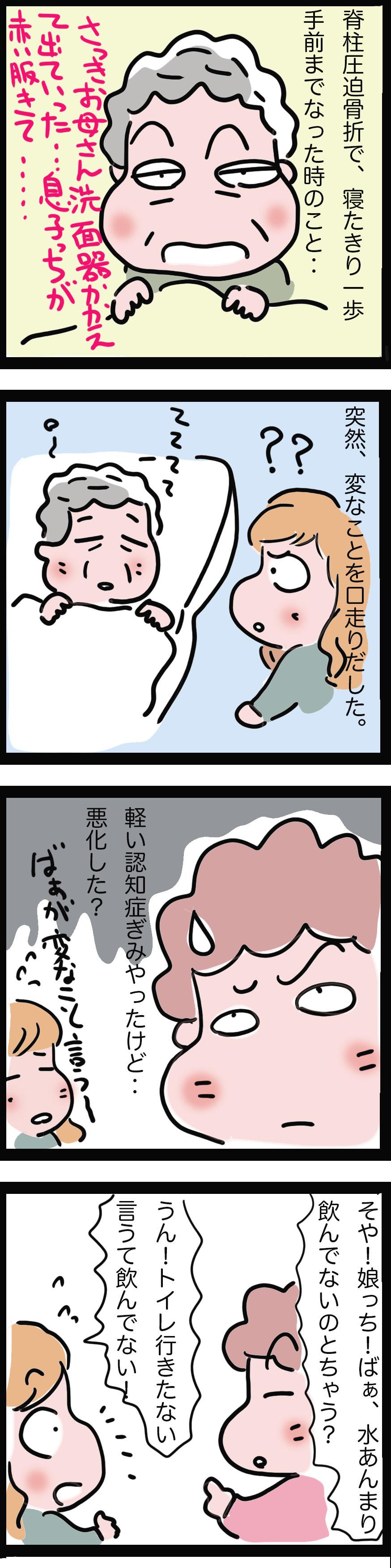 せん妄と幻視1.jpg