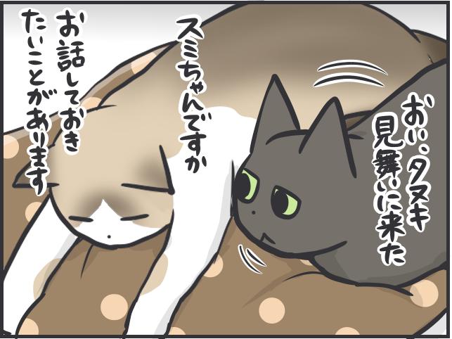 フニャコ不思議4.PNG