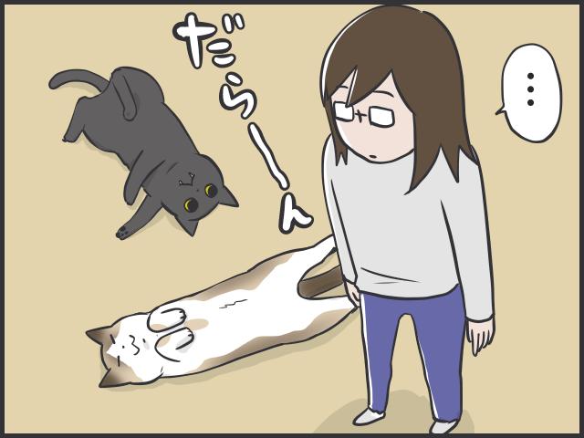 だら〜んと床に転がる猫たちは、これからの季節の風物詩/フニャコ