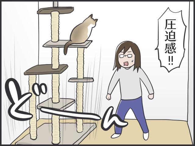 なぜあの時気づかなかった~!猫と暮らす家づくり、後悔した箇所は?/フニャコ