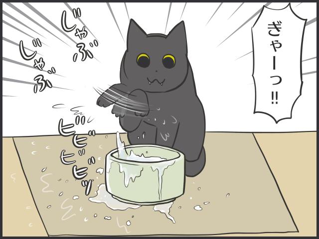 量、足りてる?どんな器がお好み?我が家の猫の飲み水対策/フニャコ