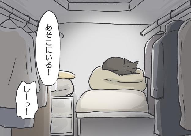 コロナ自粛で生活リズムが一変!猫だって...ひとりになりたい時がある/フニャコ