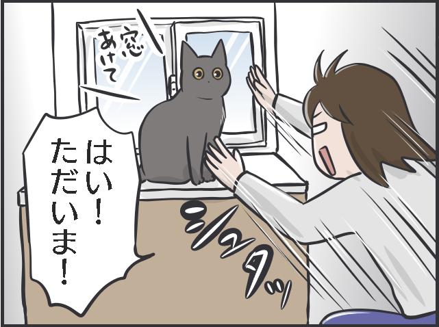 「下僕生活」は本望です! 「猫の希望」に応えることが私の幸せであり、癒しなのです/フニャコ