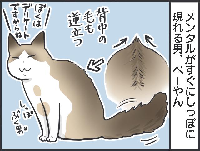 しっぽ4.PNG
