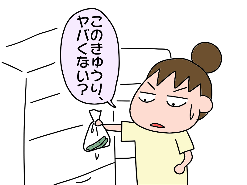 母の家の冷蔵庫は賞味期限切れ品だらけ。で、我が家は!?/あぽり