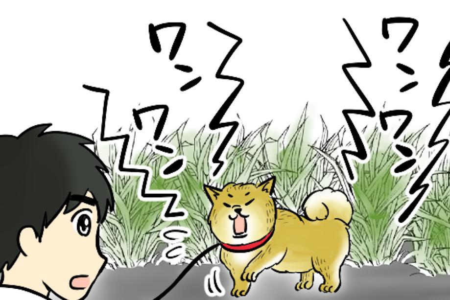 【漫画】「ちょっとおバカな天然ワンコ」がお手柄! 義母のピンチを救った亡き愛犬リキの思い出
