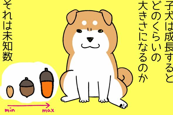 手が大きいと大きく育つ、は本当!?子犬の「手の大きさ」とサイズの関係/宮路ひま