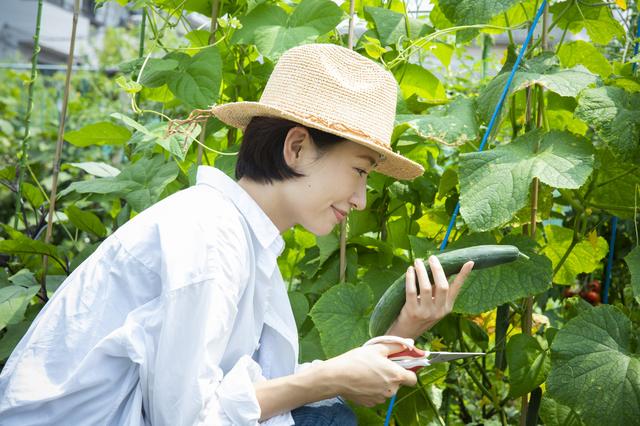 「あなたの広い庭、もったいないから野菜作ろうよ」しつこく勧める友人に疑心暗鬼になった私...
