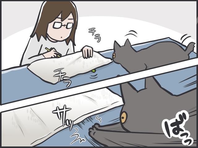 チラリズムの駆け引きが大好き! 猫が夢中になる遊び方とは?/フニャコ