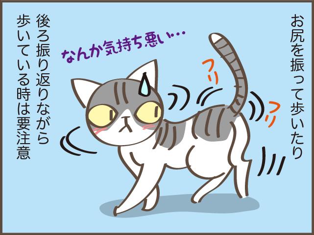 ギャー!また踏んじゃったじゃない!! 我が家の猫のコロコロの「落とし物」/しまえもん