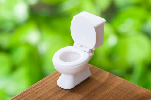 外出先のトイレに抵抗感...そんな時に覚えておきたいテクニック、クリーナー〇回拭き