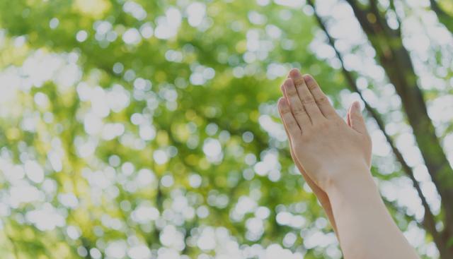 奇跡が、起きた!「神様、僕、生きていいんですね......」/僕は、死なない。(49)