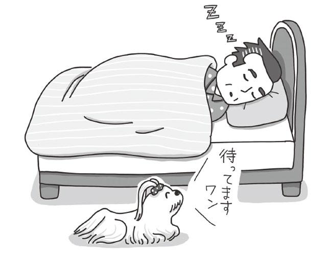 犬に合わせすぎる生活は人間にもマイナス/まんがでわかる犬のホンネ 犬はあなたにこう言ってます