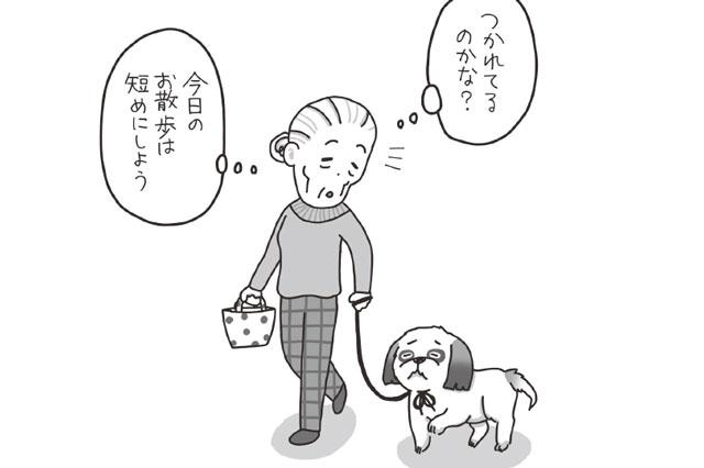 犬の甘やかせすぎはストレスを増やす要因/まんがでわかる犬のホンネ 犬はあなたにこう言ってます