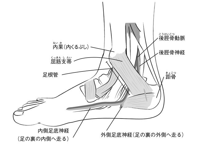 足の裏にしびれや痛み、感じてませんか?「足根管症候群」の基礎知識