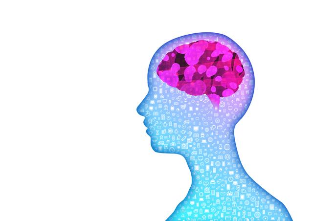 脳の機能が停止する!?痛み専門医が警告する腰痛の原因