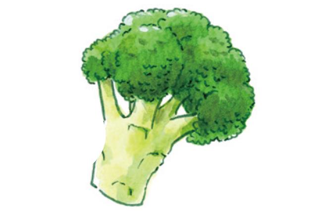 「カロリー少・水分多・シャキシャキ」でチョイス!ダイエット成功のための「野菜の選び方」
