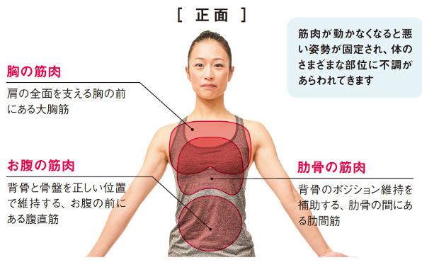 全身ゆるゆるになってない?体調改善のために伸ばすべき筋肉たち