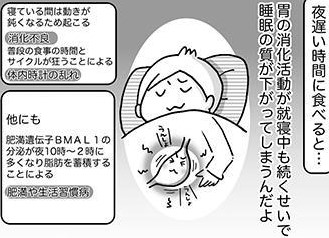 残業後の夕食たくさん食べてない?睡眠の質を上げる食事方法は? ねこ先生に教わるぐっすり睡眠法(6)【連載】