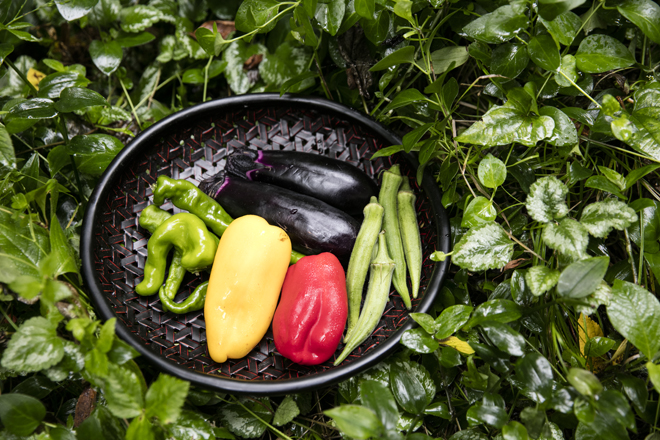 ひとつのお膳の中にさまざまな香りと風味を/精進料理研究家・藤井まりさん(2)