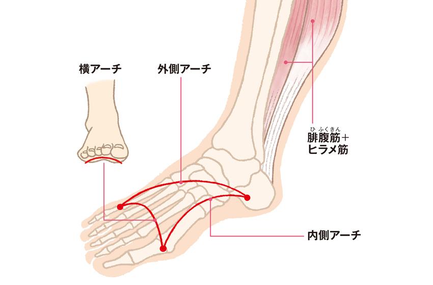足のトラブルの原因にも!「足のアーチ」の基礎知識