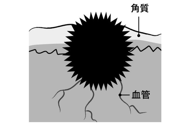 2002p091_03.jpg