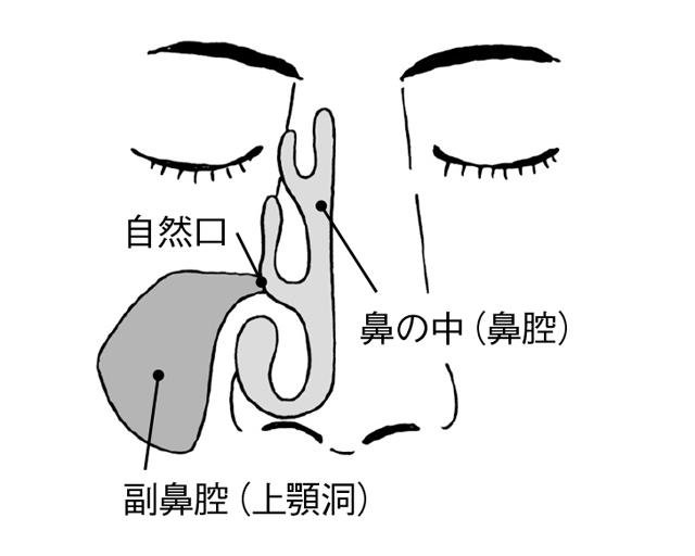 2003p087_02.jpg