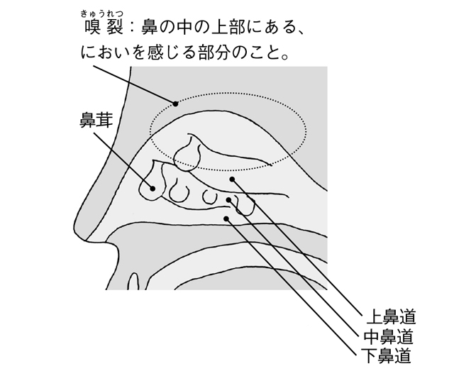 2003p087_03.jpg
