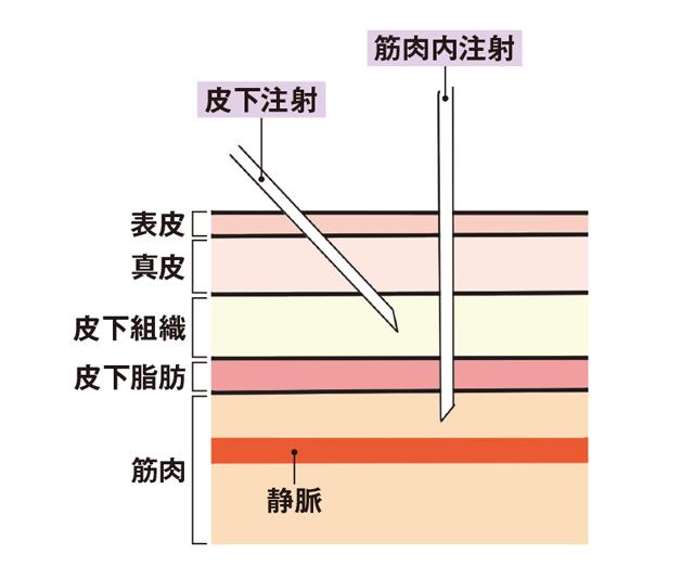 2003p100_01.jpg