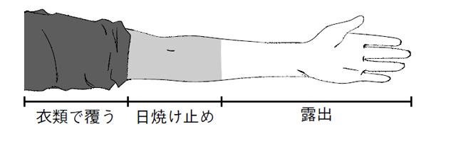 2007_91_1.jpg