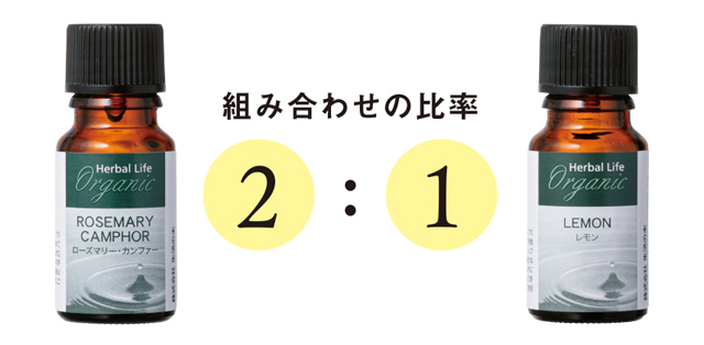 2009_P028_01.jpg