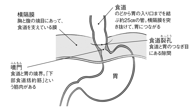 2012_P090_01.jpg