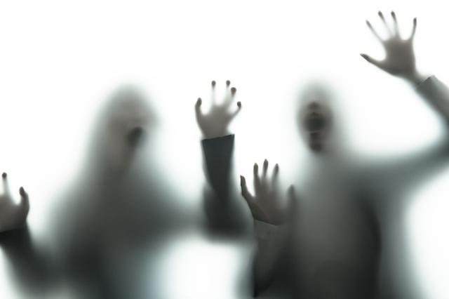 「妄想」...それは人間がほぼ一日中絶え間なく繰り広げている煩悩/反応しない練習(11)