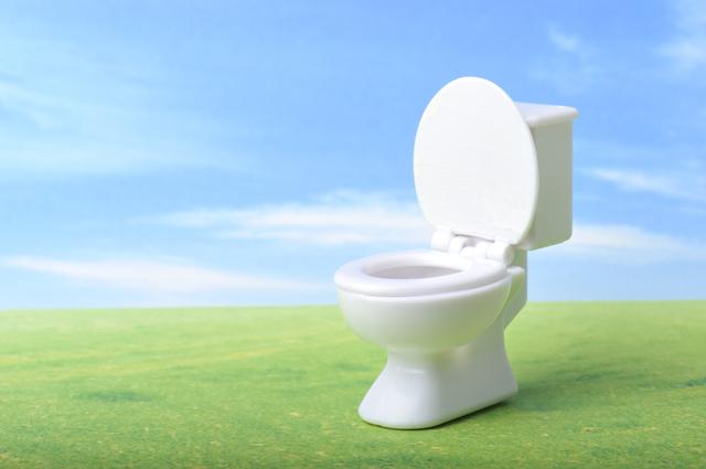 洋式トイレが便秘の原因⁉ スッキリできる排便姿勢をあの有名な銅像に学ぶ