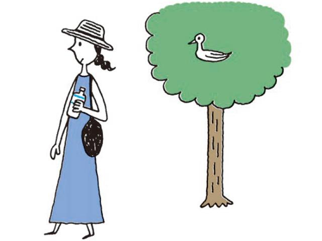 涼しい時間の散歩が効果的。「汗をかく」熱中症になりにくい体づくりを/熱中症予防の新習慣(4)