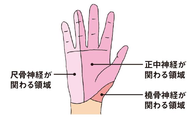 痛みの専門医が考案!手指の痛みをとる「10秒神経マッサージ」とは?