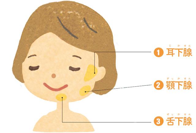 殺菌効果のある「唾液」をたっぷり出すために。「3大唾液腺マッサージ」のススメ