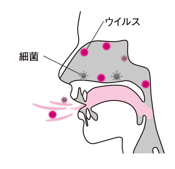 鼻うがい-001-.023-2.jpg