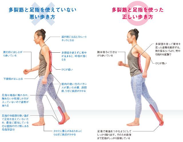 あなたの歩き方は大丈夫?体の痛みをなくせる正しい歩行方法