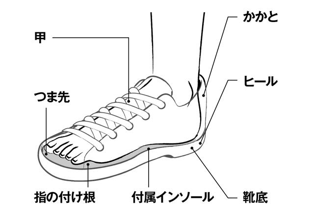 正しい靴の選び方をご存じですか?「魚の目・たこ」の予防&治療法