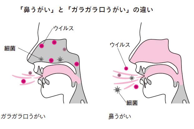 ウイルスの除去にも効果的⁉ 「上咽頭」を洗う「鼻うがい」とは?