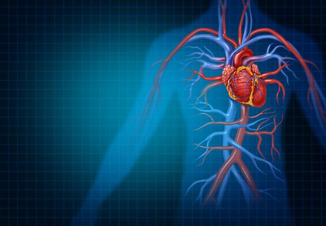 「大動脈解離」になると、血管はこのように変化していく