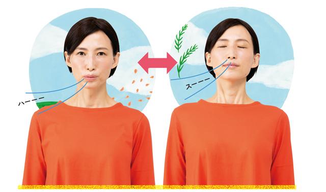 「ゆっくり呼吸」が免疫力を高める! 肺の力を高めて自律神経を整える「呼吸トレーニング」の方法